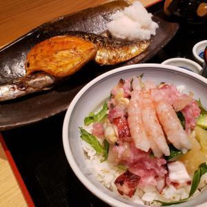 【できたて屋 @四ッ谷】絶品寿司で有名な根室花まるの系列店が東京四谷にオープン。流石のクオリティの一夜干しと海鮮丼を味わえる【ごちそう三種定食 + 花まる丼】