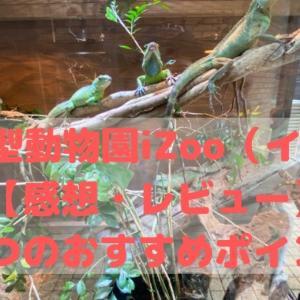 体感型動物園iZoo(イズー)【感想・レビュー】 5つのおすすめポイント