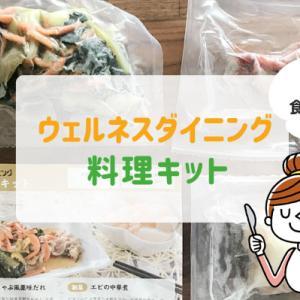 ウェルネスダイニング 冷凍の料理キット【作って食べてみたから分かるメリット・デメリット】