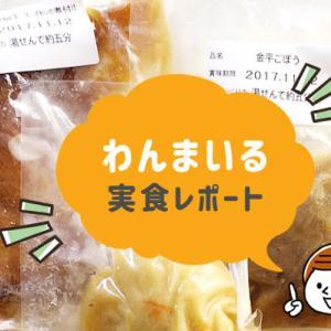 わんまいるのお惣菜宅配弁当を食べてみた私の口コミ【評判は本当?】