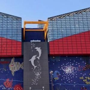 【2019年最新】海遊館割引10選!最安値入場料420円引きクーポン