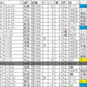 2019ラピスラズリステークス TEKIKAKU予想