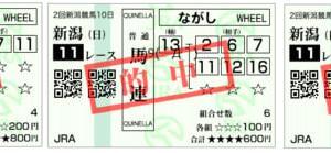 2019新潟2歳ステークス結果(ワイド1910円,馬連660円,複勝180円的中)