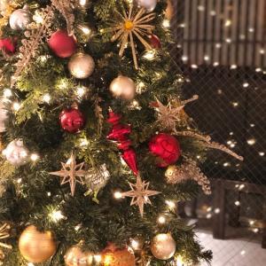 クリスマスにする○○なこと、忘れてない?