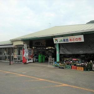 [香川]三豊で産直市ハシゴ!「JAあさの市」の商品やアクセスを紹介します