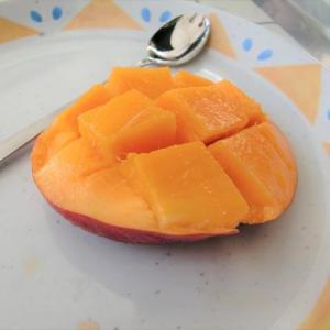 [高知]「西島園芸団地」のマンゴーは激甘でおススメ