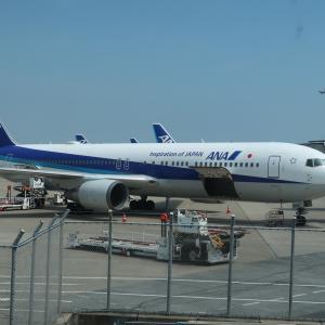 【18500ANAマイルでOK】国際線ビジネスクラスも利用!宮崎とソウルと函館を巡る旅。