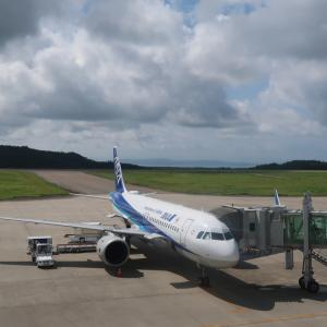 ANA748便搭乗記(能登10:30→羽田11:35)目標62%も今年は対象外。搭乗率保証の能登空港。