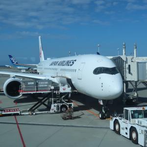 JAL国内線ファーストクラス搭乗記。国際線ビジネスクラス気分。(JAL910便 那覇14:10→羽田16:30)