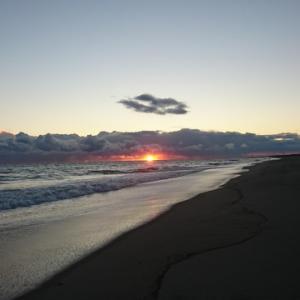 12月の遠州サーフ⑤