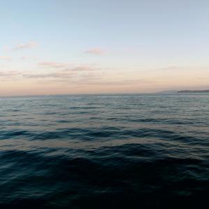 2月24日 某堤防2回目