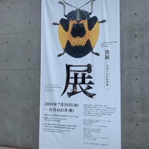 『虫展‐デザインのお手本‐』に行ってきました