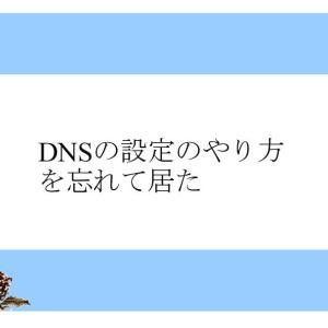 DNSの設定のやり方を忘れて居た