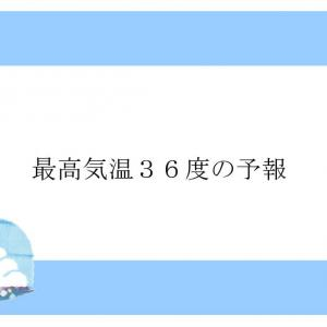 最高気温36度の予報