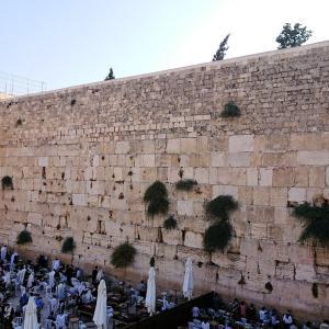 """""""聖地エルサレム""""旅行記ブログ-35  エルサレム旧市街地でモロッコ門から嘆きの壁を見下ろす編"""