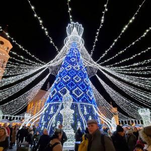 ヴィリニュス大聖堂前のカテドゥロス広場で輝くクリスマスツリー-バルト三国旅行記-14