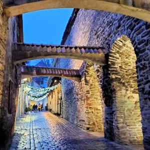 タリンで最もロマンティックな場所と言われるカタリーナ通りから観光開始-バルト三国旅行記-33