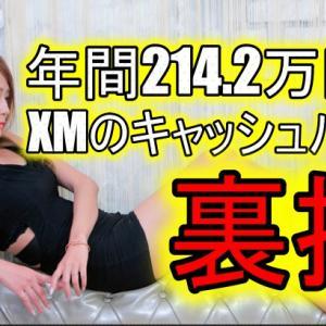 <年間214.2万円!>XMのキャッシュバック裏技も紹介!