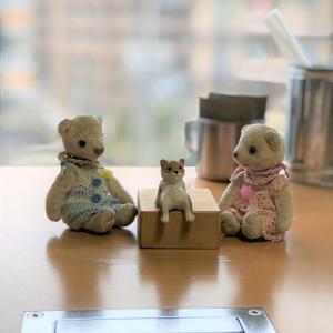 8月の彫金教室は柴犬くんと(^^)