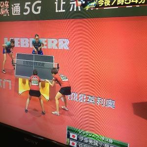 世界卓球を見て