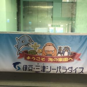 来ました伊豆・三津シーパラダイス!