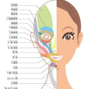 表情筋のトレーニングでどれだけ美しくなれるか??