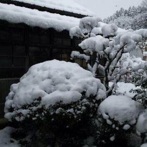 奥州市前沢は積雪8cm~15cm この冬初めての雪かき