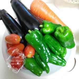 収穫野菜、嬉しいけど・・・ 調理も食べるのも大忙し