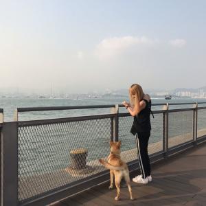 意外に知らない香港の絶景海スポット!ケネディタウンでお散歩日和♪