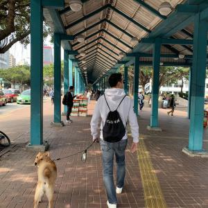 香港セントラルのフェリーターミナル乗り方講座!ペットも一緒にラマ島へ〜♪