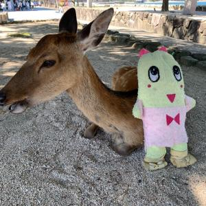【ツベルクリンWalker】厳島神社だけじゃない!宮島の魅力をひねくれながら紹介!