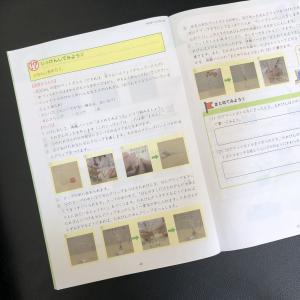 Z会 エブリスタディアドバンスト 理科 9月号  ちょうせん!うきしずみマジック