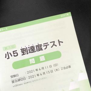 Z会 エブリスタディアドバンスト 5年生 到達度テスト