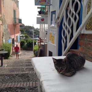 シチリア島の離島・絶海の孤島ウスティカ島で街歩きした話【イタリア】