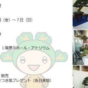川口市道の駅 樹里安で開催中の皐月盆栽 彩風展へ出かけてきました。