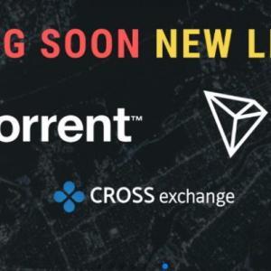 クロスエクスチェンジ(crossexchange)2019/02/18の配当,ついにXex続伸,TRON,BitTorrent上場