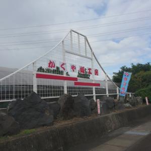 静岡県東部メダカ愛好会オフ会の前に