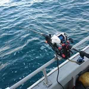 コマセ真鯛❗  深場 大鯛狙い🎣🐟🎣