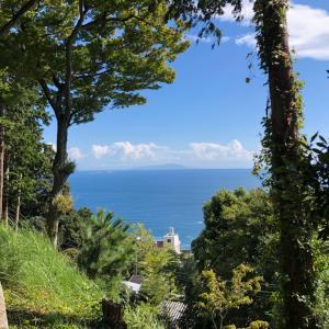 熱海・伊豆山神社✴︎2020年に向けて〜龍から龍へつなぐ旅②