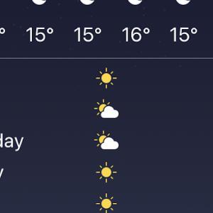 ケアンズに冬が来ました