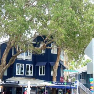 Palm Coveの美味しいカフェ