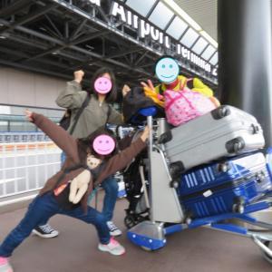一緒に子連れ海外旅行に連れて行く5人目の家族「くーちゃん」