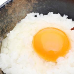 卵かけご飯を食べまくっているとハゲちゃうかもしれない説について