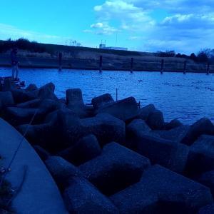 真冬でもブラックバスが釣れる!と有名な荒川の通称「温泉」に行ってみた!