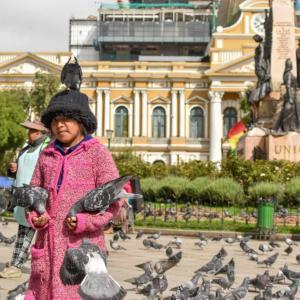 【ボリビア】ラパス街歩き編。魔女市場にハト公園。おすすめカフェも!