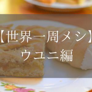 【世界一周メシ:ウユニ編】ウユニ塩湖観光で食べたいおすすめご飯7選