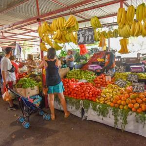 【サンティアゴ】買いすぎ注意!新鮮野菜が安い日曜市へ。