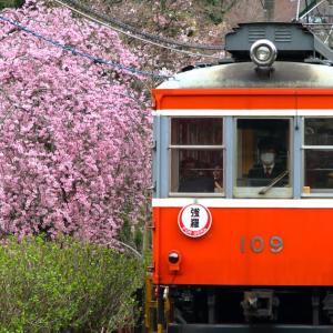 令和の始まりとともに生涯を終える、箱根登山鉄道モハ1形のこと