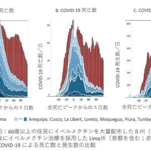 日本発「イベルメクチン」インドで感染者数減 その1
