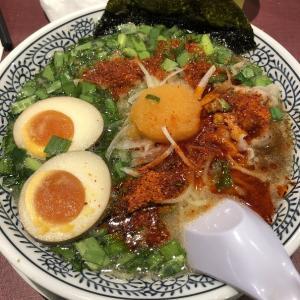 【丸源ラーメン 鹿児島新栄店】 〜熟成醤油ラーメン「肉そば」〜
